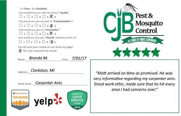 "alt="" review card for Carpenter Ants problem from a customer in Clarkston, Mi."""