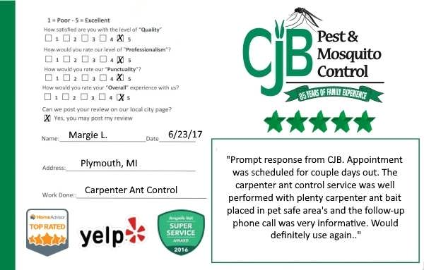 "alt=""pest control review card from a customer in Plymouth, Mi."""