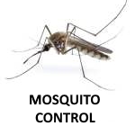 "alt=""a lone mosquito on a white background to illustrate CJB Pest controls mosquito program """